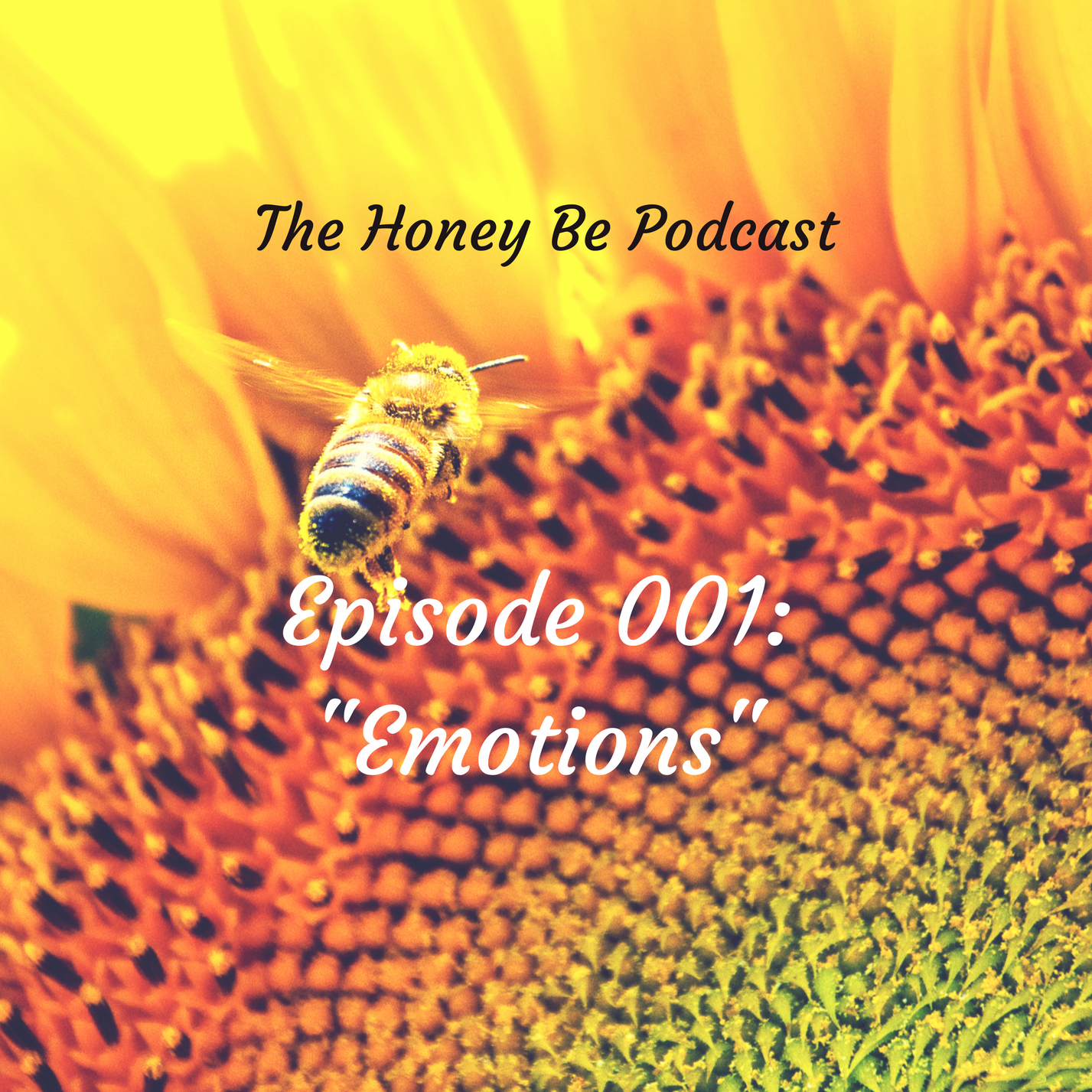 "The Honey Be Podcast – Episode 001: ""Emotions"""