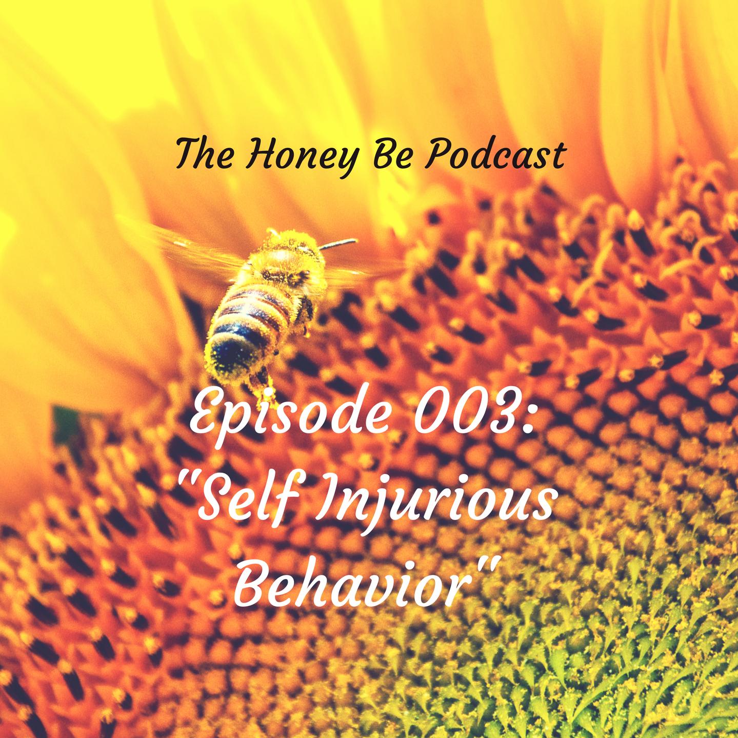 "The Honey Be Podcast – Episode 003: ""Self Injurious Behavior"""