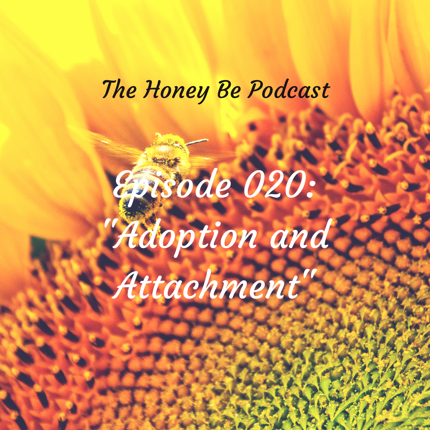"""The Honey Be Podcast – Episode 020: """"Adoption and Attachment"""""""